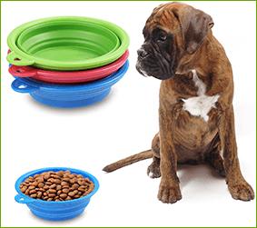 offer pet bowl